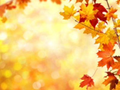 L'autunno in cucina, per ogni tipo metabolico!