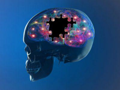 Memoria e cervello, come mantenerli in buona salute?