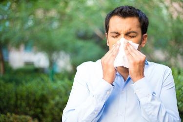 raffreddore o sinusite?