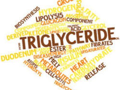 Trigliceridi alti, come comportarsi?